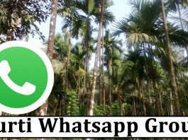 Join Curti Whatsapp Group Link